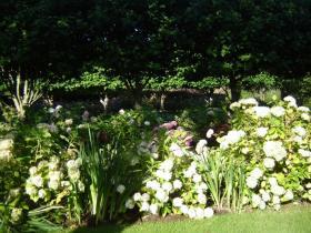 Landscape gardening wexford
