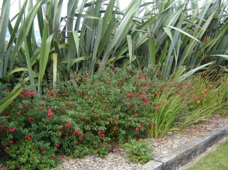 Landscaped Seaside Garden Wexford